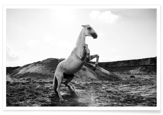 Majestic Stallion by @Werema affiche