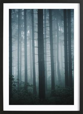 Morning Mist by @goldenhourpictures -Bild mit Holzrahmen