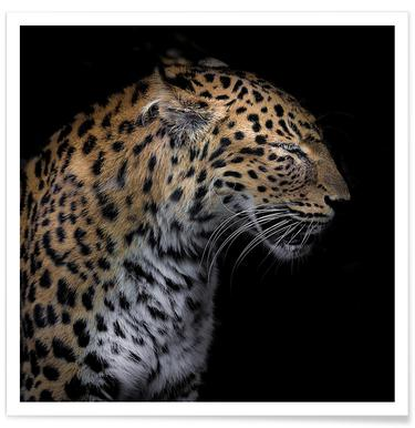 Leopard Profile by Lothare Dambreville -Poster