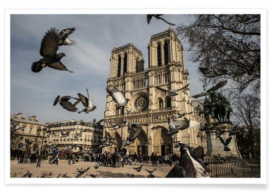 The Birds of Notre Dame by Michael Kraus Poster