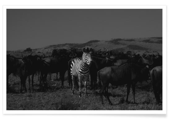 Stand out from the Crowd by Amishpatel Poster