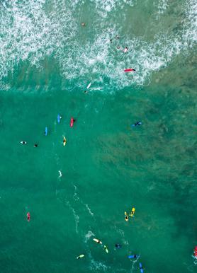 Everybody's Gone Surfin' by Lentam -Leinwandbild