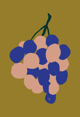 Joyful Fruits - Grapes Aluminium Print