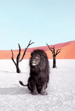 Namibia tableau en verre