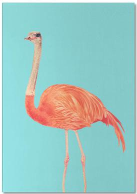 Flamingostrauss
