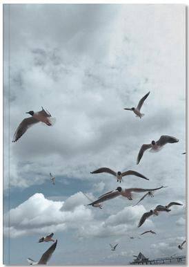 Gulls VII Notebook
