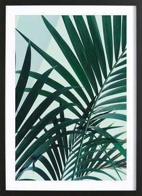 Palm Leaves ingelijste print