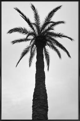 Palm Love Framed Poster