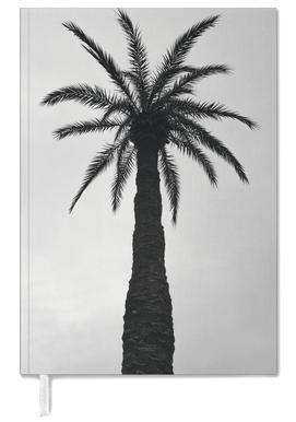Palm Love agenda