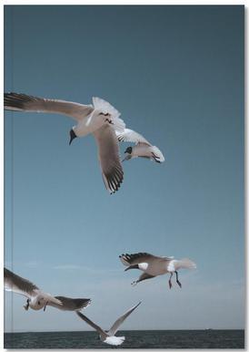 Seagulls II Notebook