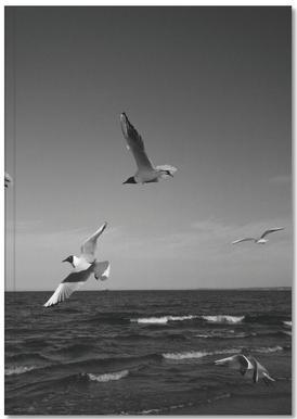 Seagulls III Notebook