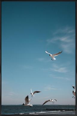 Seagulls IV Framed Poster