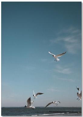 Seagulls IV notitieblok