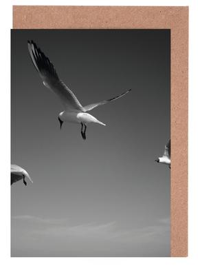 Seagulls V Greeting Card Set