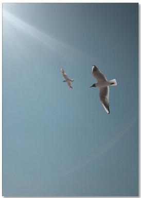 Seagulls VI Notepad