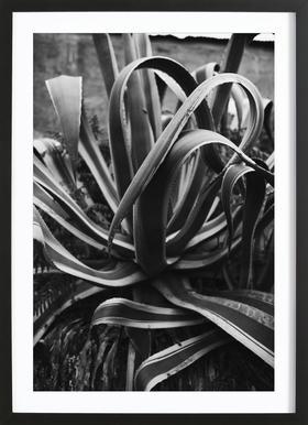 Portugal Roadside Framed Print