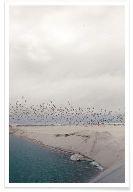 Portugal Beach Poster