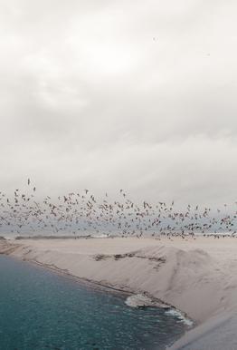 Portugal Beach alu dibond