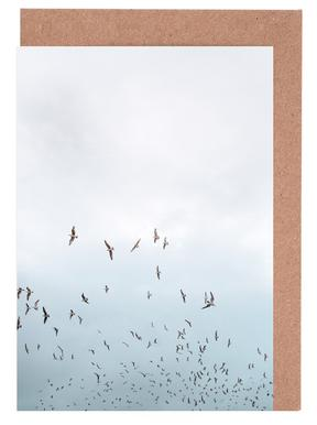 Birds in Porto Greeting Card Set