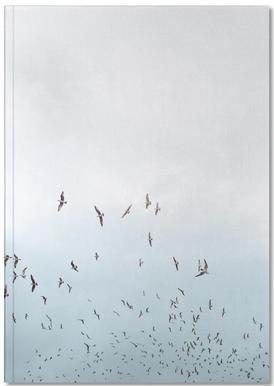 Birds in Porto Notebook