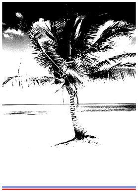 80'ish Canvas Print