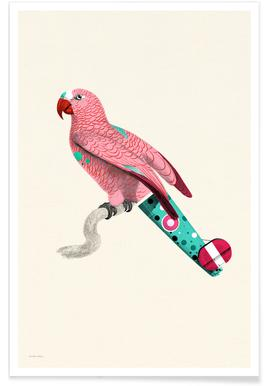 Pale Pink Parrot Poster