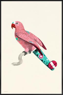 Pale Pink Parrot -Bild mit Kunststoffrahmen