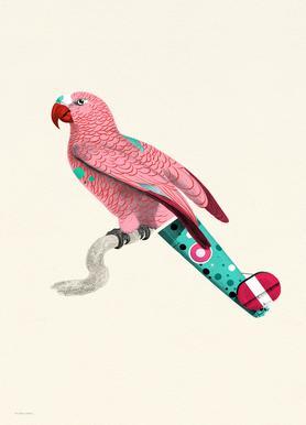 Pale Pink Parrot -Leinwandbild