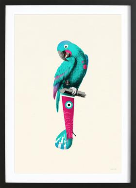 Turquoise Parrot -Bild mit Holzrahmen