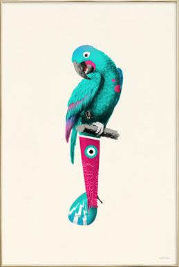 Turquoise Parrot -Poster im Alurahmen