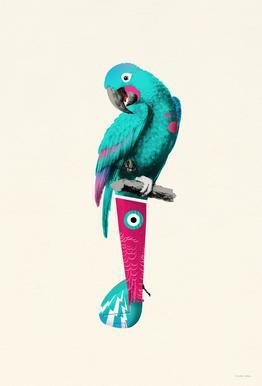 Turquoise Parrot Aluminium Print