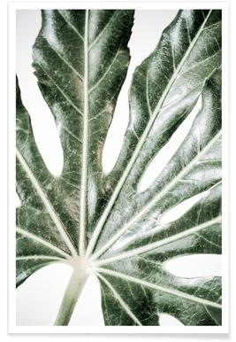 Light Palm -Poster