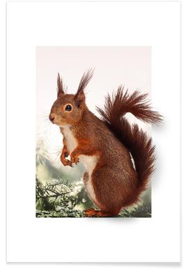 SQUIRREL -Poster