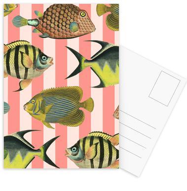 Pattern Fish Stripes -Postkartenset