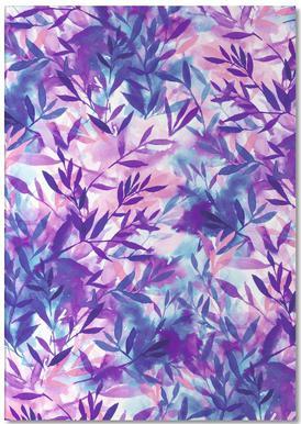 Changes Purple