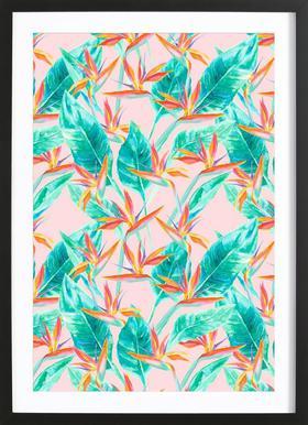Birds Of Paradise affiche sous cadre en bois