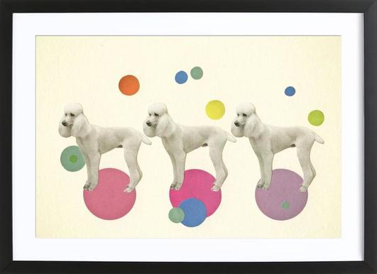 Oodles of poodles Framed Print