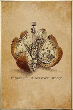 A Clockwork Orange poster in aluminium lijst