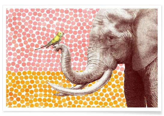 Elephant and Bird affiche