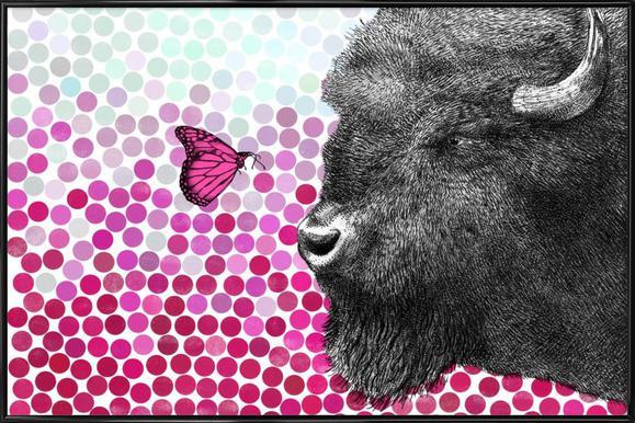 Bison and Butterfly ingelijste poster
