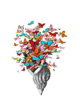 Seashell with butterflies Canvas Print