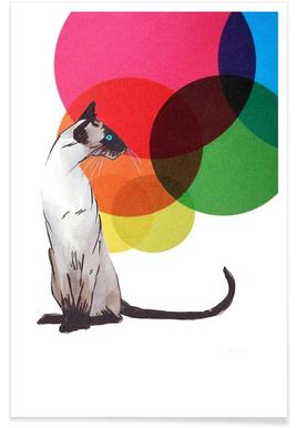 Siamese Cat with colorful balls - Poster