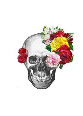 Skull with roses Canvas Print