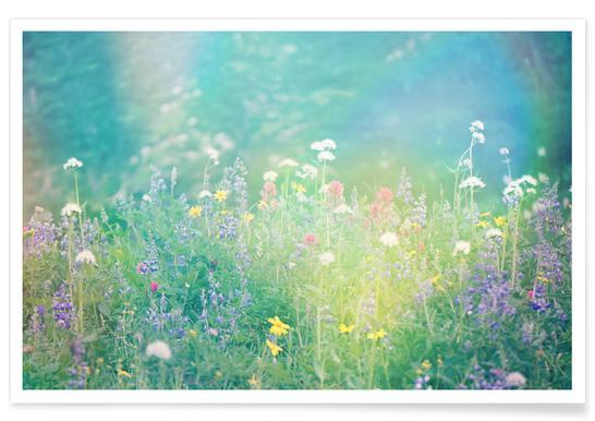 Mountain Wild Flowers 2 Poster
