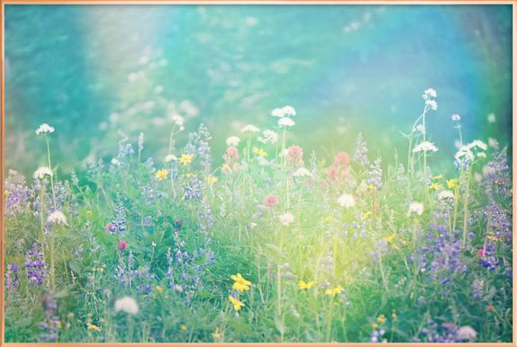 Mountain Wild Flowers 2 Poster in Aluminium Frame