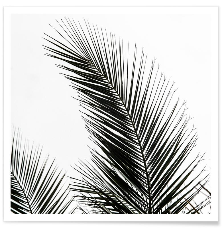 palm leaves 1 als premium poster von mareike b hmer juniqe. Black Bedroom Furniture Sets. Home Design Ideas