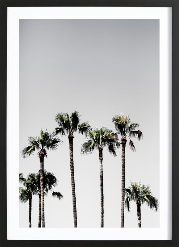 palm trees 5 as poster in wooden frame by mareike böhmer juniqe