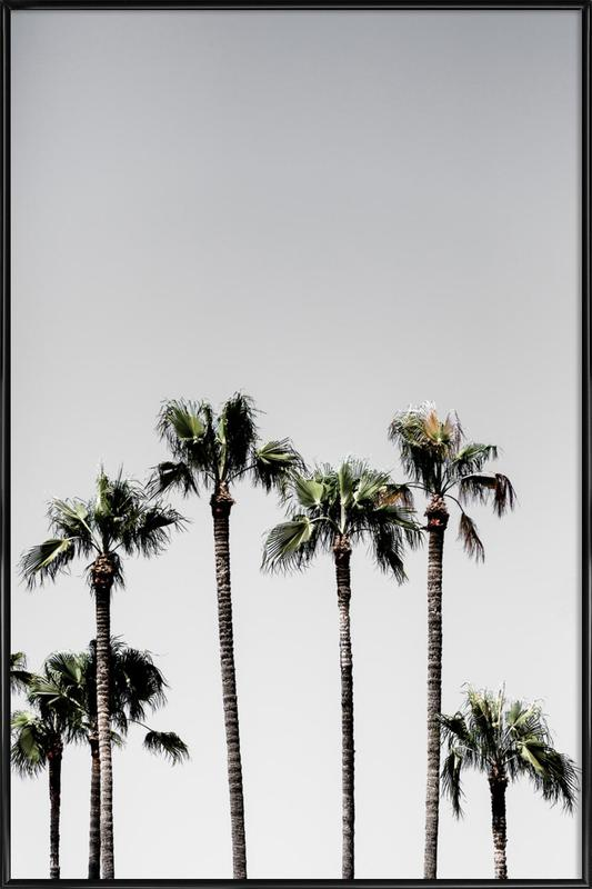 Palm Trees 5 As Poster In Standard Frame By Mareike Bhmer Juniqe