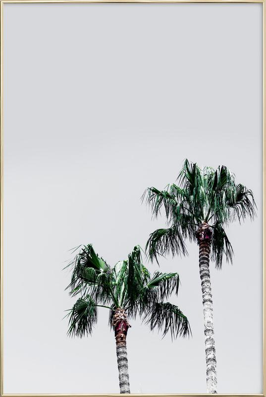 Palm Trees 6 As Poster In Aluminium Frame By Mareike Bhmer Juniqe