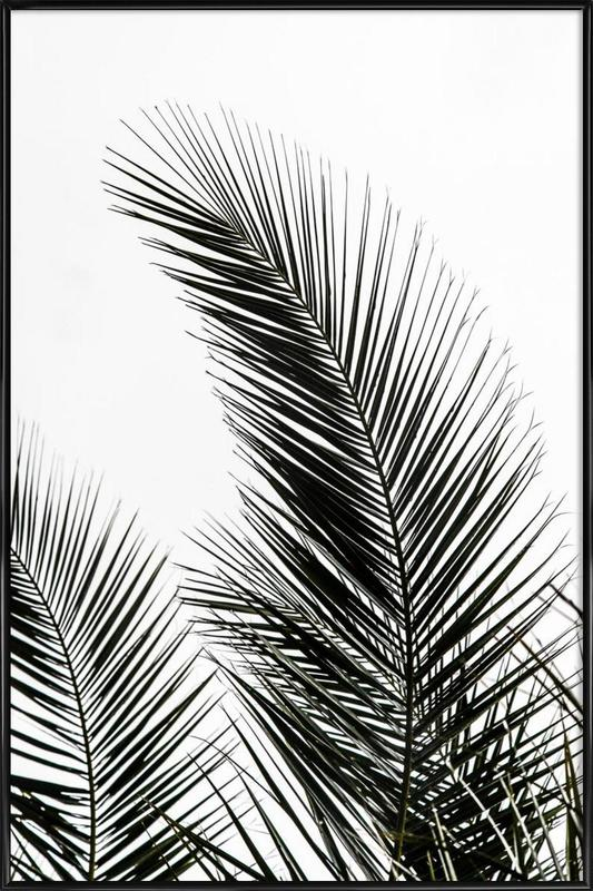palm leaves 1 as poster in standard frame by mareike böhmer juniqe